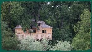 chambre d hote cabane dans les arbres chambre d hôtes dans une cabane dans un arbre à château gauthié en