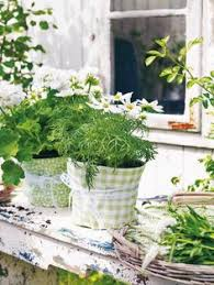 Shabby Chic Flower Pots by Garden In Front Of 3 Tier Flower Pots Gardening Pinterest