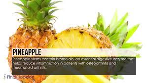 rheumatoid arthritis diet youtube