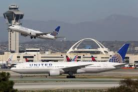 united airlines blamed for 5 year old dog u0027s death fox news