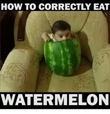 Watermelon Meme - 25 best memes about watermelon watermelon memes