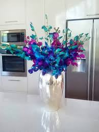blue orchids orchids flowers blue range shipping included tropical blooms