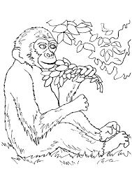 monkey ready eat leaves plants coloring preeschool