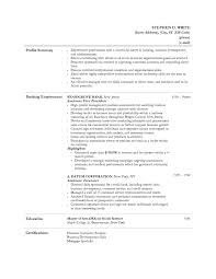 Job Resume Personal Statement by Bank Teller Duties And Responsibilities For Resume Free Resume