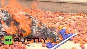 Spain Flag 2014 Peach Protest Spanish Farmers Burn Eu Flag In Revolt Against
