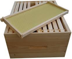 beehives makeup of a bee u0027s home cox u0027s honey