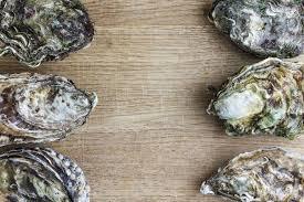 comment cuisiner des huitres comment cuire des huîtres entières fwiblog com