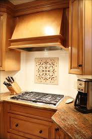 awesome ideas for backsplash behind stove contemporary best idea