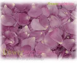 Where Can I Buy Rose Petals Fresh Rose Petals Where To Buy Real Rose Petals Flower Explosion