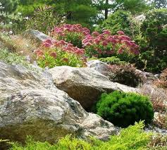 rock garden design ideas guide pro tips install it direct