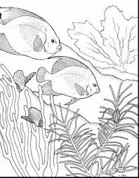 coral reef clipart coloring page pencil and in color coral reef