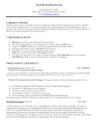 Sample Sales Rep Resume by Cv Sample Sales Consultant