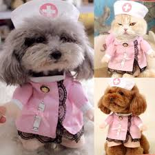compare prices on halloween nurse online shopping buy low