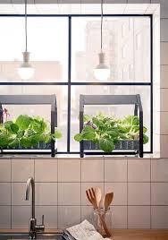 plante pour cuisine relooker une cuisine idées déco tendance et originales côté maison