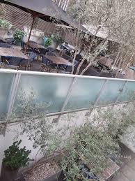 hotel planting kensington plunket gardens garden designer london