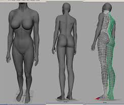 Female Body Reference For 3d Modelling Art Of Wei Drawings U2013 Paintings U2013 Sculpting U2013 How To Draw Page 27