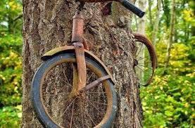 Bike Meme - bike meme