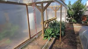 fall winter mittleider garden update jan 16 youtube
