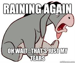 Tears Meme - eeyore tears meme from the left field