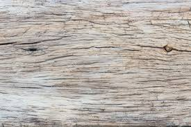 wood grain web background 11734