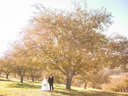 paso robles wedding venues paso robles wedding venues central coast wine country wedding
