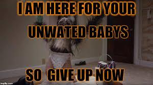 Baby Monkey Meme - puppy baby monkey imgflip