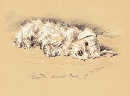 695 best dog drawings and paintings images on pinterest dog