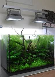 best led light for planted tank indianaquariumhobbyist com forums lighting for planted aquaria