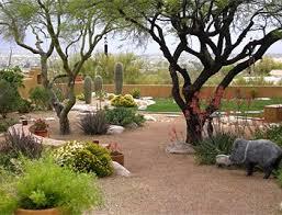 Best Desert Backyard Ideas Images On Pinterest Desert Backyard - Desert backyard designs