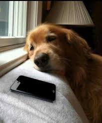 Waiting For Text Meme - me waiting for a reply to a text imgur