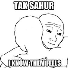 Them Feels Meme - tak sahur i know that feels i know them feels meme generator