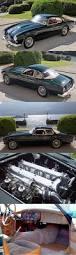 2015 nissan juke goose creek 54 best triumph tr series images on pinterest vintage cars