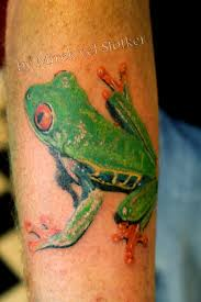 eyed tree frog by mirek vel stotker stotker flickr