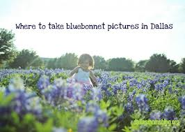 Texas travel blogs images 179 best dallas images fort worth dallas and texas jpg