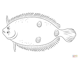three eye flounder coloring page free printable coloring pages