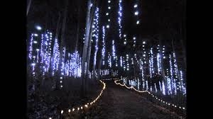 Botanical Gardens Lights Green Bay Botanical Garden Of Lights
