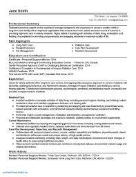 behaviour report template pretty behavior report card template images professional resume