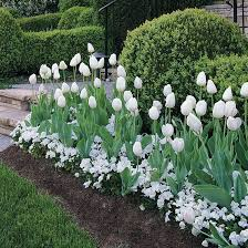 easy landscaping ideas rc willey blog