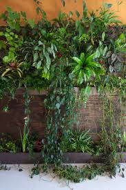 building a sub irrigated vertical garden in your bedroom