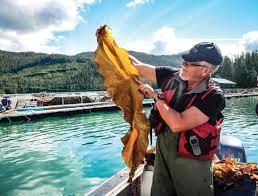 canadian aquaculture r u0026d review 2017