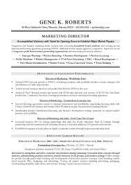 Sample Resume Marketing Executive by Sample Cto Resume Resume Cv Cover Letter Sample Cto Resume Resume