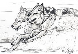 wolves running sketch by silvercrossfox on deviantart