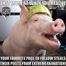 Extreme Memes - extreme 4x4 nation memes extreme 4x4 nation meme s pinterest 4x4