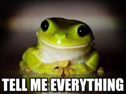 Everything Meme - tell me everything therapy frog meme on memegen