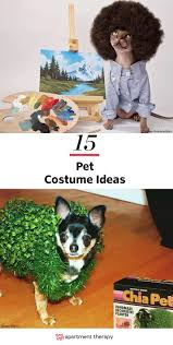 the most popular dog costumes popsugar pets best 25 cat costumes ideas only on pinterest cute cat costumes