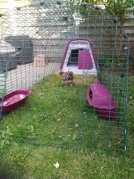 Backyard Chicken Coops Brisbane by Eglu Go Chicken Coop Chicken Keeping Omlet