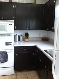 Kitchen Cabinet Gel Stain Java Gel Stain Kitchen Cabinets Monsterlune Winters Texas
