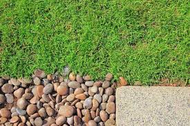 decorative pebbles using as a garden mulch and ground cover