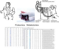 proteomics and metabolomics as tools to unravel novel culprits and