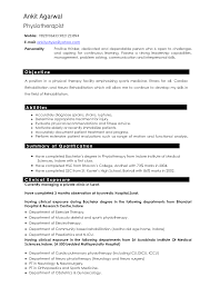 Best Resume Profile Summary by The Resume Clinic Free Resume Example And Writing Download